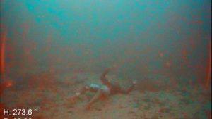 Lampedusa - Uno dei corpi individuati dal rov della Guardia costiera a 60 metri di profondità