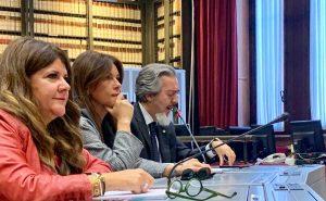 Il senatore Battistoni (FI) in audizione col ministro Bellanova