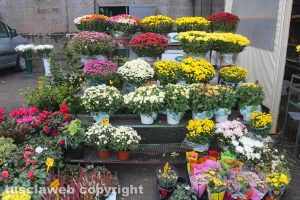 Viterbo - La vendita di fiori al cimitero di san Lazzaro