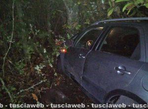 Caprarola – Auto si scontra con un cinghiale e finisce contro una albero