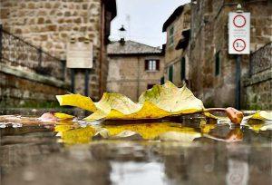 Vejano - La poesia dell'autunno - Foto di Jacopo Pasquali