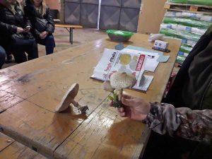 Tarquinia - Il corso per la raccolta dei funghi dell'Università di Agraria