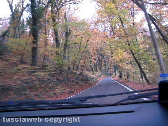 In viaggio nell'autunno della Valle di Vico...