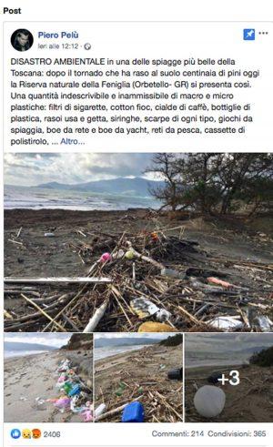 Il post di Piero Pelù per ripulire la spiaggia della Feniglia