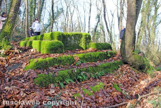 Bassano in Teverina - Una tomba nel bosco