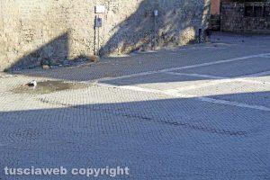 Viterbo - La deformazione in piazza San Lorenzo