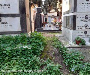Le erbacce al cimitero