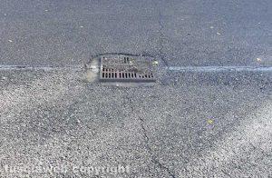 Viterbo - Un tombino in strada Acquabianca