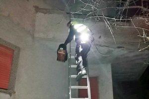 Montefiascone - Gattino intrappolato su un terrazzo - L'intervento delle guardie ecozoofile