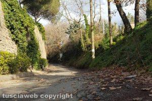 Viterbo - Buche lungo strada Ellera