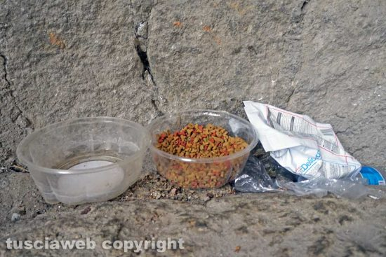 Viterbo - La vita dei senza tetto ai tempi del Coronavirus