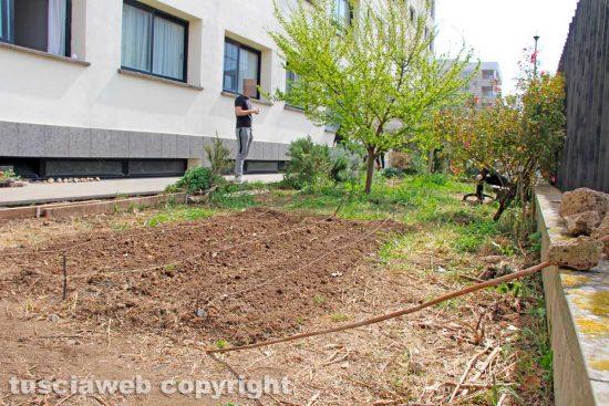 Viterbo - L'orto degli studenti in via Cardarelli