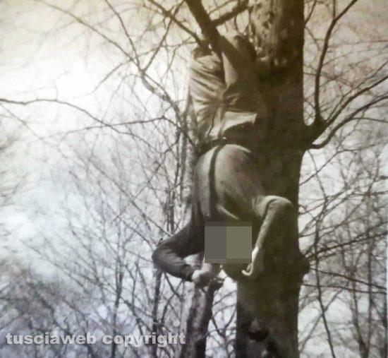 Montefogliano - Marco a testa in giù appeso a un faggio