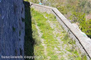 Viterbo - Incuria nella frazione di Roccalvecce