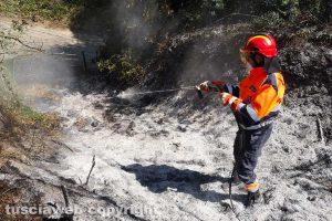 Montefiascone - L'intervento dell'Asvom Odv in località Caversa