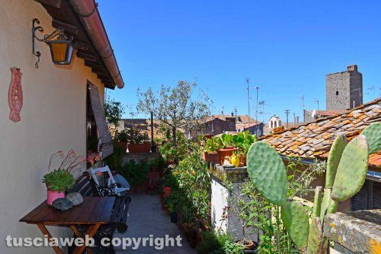 Viterbo - Il terrazzo di Mariella Zadro