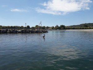 Il porto di Marta