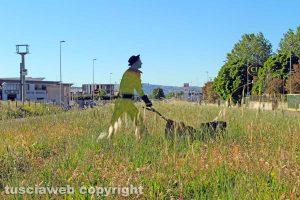 Viterbo - La zona industriale del Poggino