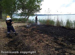 Montefiascone - Incendio di sterpaglie e canneto sul lungolago
