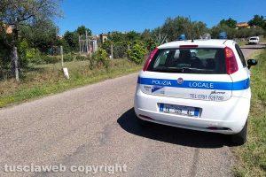 Montefiascone - I due cani trovati in via Otto marzo - L'intervento della polizia locale