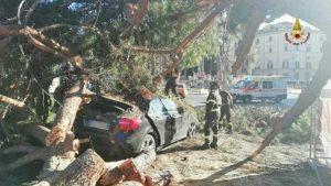 Roma - L'albero caduto su una macchina a piazza Venezia