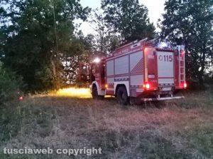 Incendio di sterpaglie - Vigili del fuoco sul posto