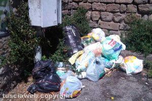 Viterbo - Cumulo di rifiuti fuori porta San Pietro