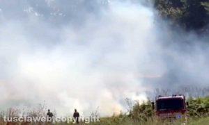 Montalto di Castro - L'incendio ai cumuli di spazzatura
