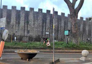 Viterbo - Orto urbano a piazzale Gramsci