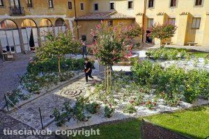 Viterbo - Il roseto del monastero di Santa Rosa