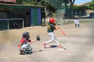 Sport - Baseball - Leonardo Bertollini