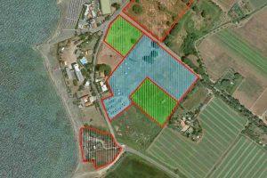 Tarquinia - I progetti per il lido - Le zone di intervento