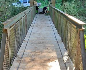 Il ponte sul torrente Freddano ripulito
