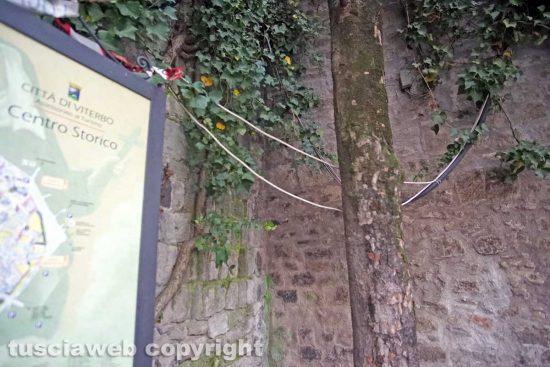 Viterbo - I cavi a piazza San Carluccio