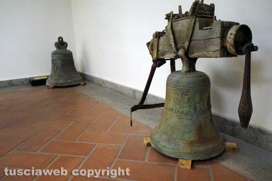Viterbo - Museo Civico