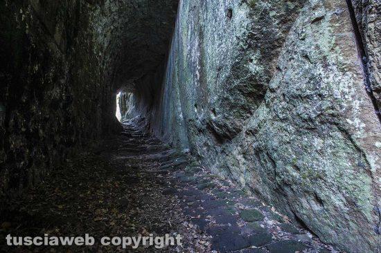 Il sentiero che porta alla Torre di Pasolini - Maurizio Di Giovancarlo
