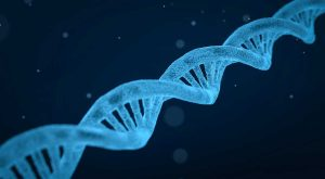 Malattie genetiche rare, una stringa di dna