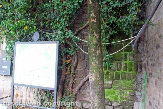 Viterbo - I cavi in piazza San Carluccio