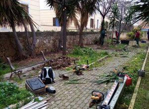 Civitavecchia - Giardini Trenta - Lavori di manutenzione del verde