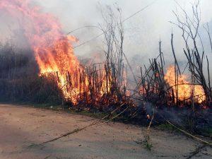 Incendio a Tarquinia