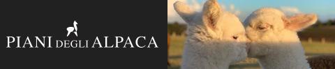 Piani-degli-Alpaca-480x100-14-6-21