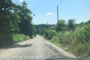 Buche lungo il tratto di strada che collega Ronciglione e Sutri